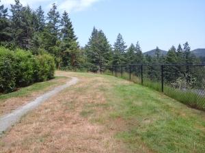 Bishops Park ridge 8