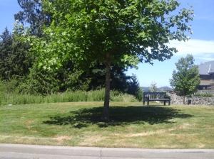 Deerview Park 2
