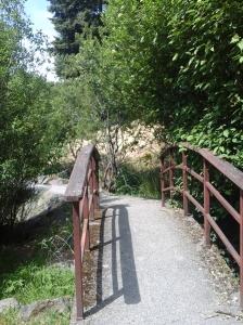 Lake Ida Ann Park 2