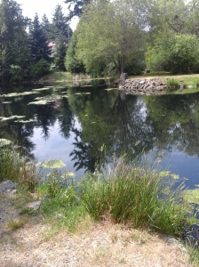 Lake Ida Ann Park 5