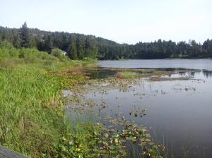 Florence Lake Stachen Trail 7