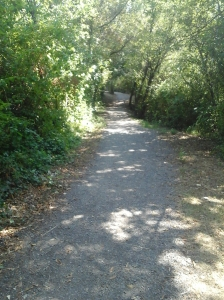 Florence Lake Strachan Trail gravel