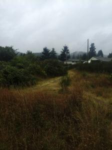Lakehurst Vista Dawn gs trails