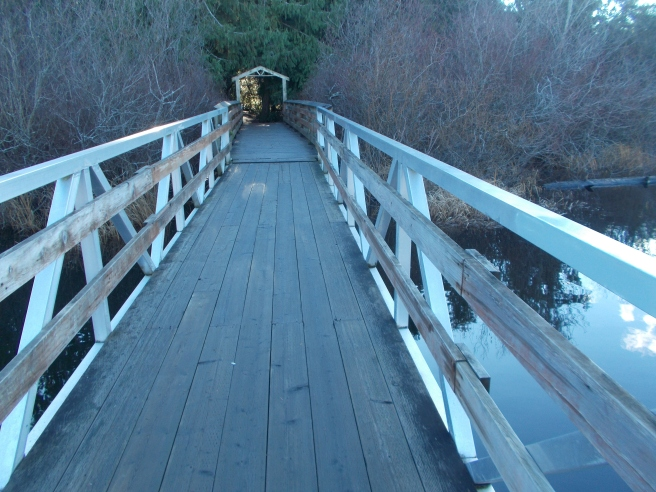 boardwalk on Glen Lake east end