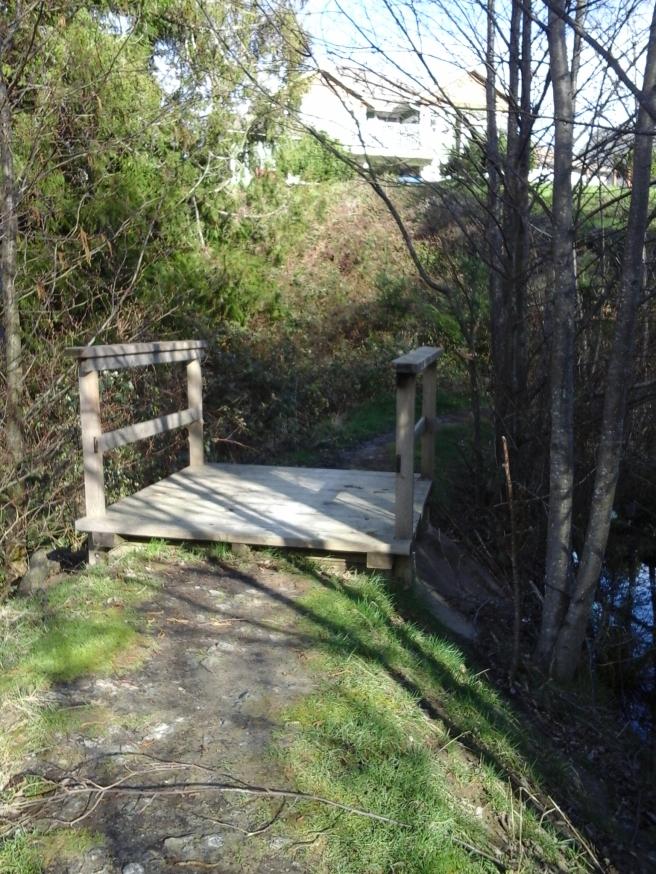 Wild Pond park 2