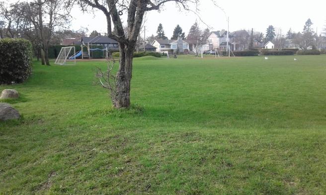 Lafayette Park2