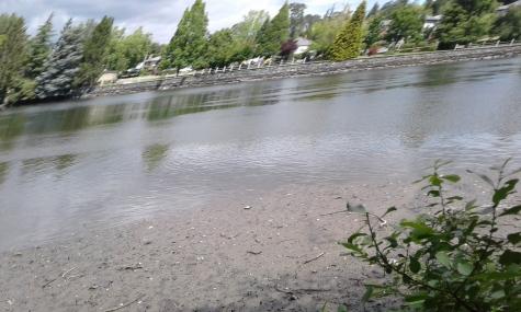 Glenvale Park Esquimalt
