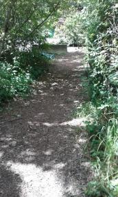 Glenvale Park path
